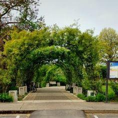 Owen Rose Garden - Arbor entrance. - Eugene, OR, United States