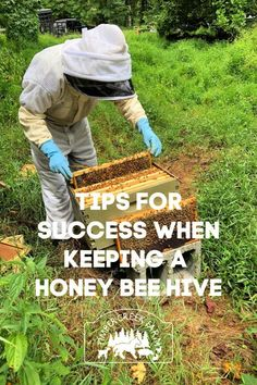 Best Tips For Keeping a Honey Bee Hive – Timber Creek Farm - Modern Honey Bee Pollen, Honey Bees, Honey Bee Farming, Langstroth Hive, Bee Hive Plans, I Love Bees, Backyard Beekeeping, Worm Composting, Annual Plants