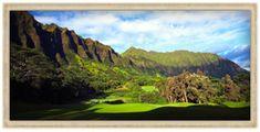golf tip videos Golf Humor, Funny Golf, Golf Course Reviews, Golf Videos, Play Golf, Golf Tips, Golf Clubs, Golf Courses, Hawaii