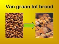 Van graan tot brood by via slideshare Dog Food Recipes, Healthy Recipes, Pain, Lunch, Banket, Site, Facts, Google, Bakery Business