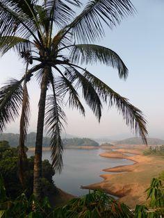 Wayanad, #Kerala