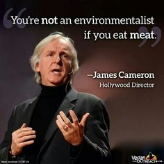 vegan: you are not an environmentalist if you eat meat ~ James Cameron