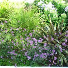 Gardens, Plants, Outdoor Gardens, Plant, Garden, House Gardens, Planets