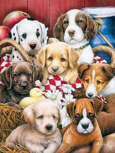 Jenny Newland - Picnic Basket Pups