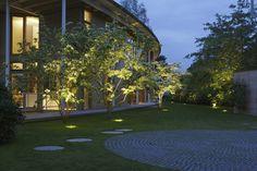 Pięknie podświetlone drzewa, ogród, lampki nocą https://www.homify.pl/katalogi-inspiracji/10006/zewnetrzne-oswietlenie-domu