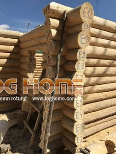 Galerie foto case si cabane din lemn rotund - LOG HOME Vatra Dornei, Suceava Case, Wood, Woodwind Instrument, Timber Wood, Trees