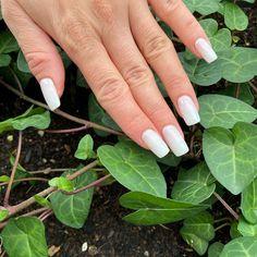 SUMMER NAILS Nailartist: @orsy_laszlo - GETT'S Color Bar Salon Iulius Mall Cluj #nailsofinstagram #nails #nails💅 #nailsoftheday #nailsart #whitenails #nails2inspire #nailsonfleek #nailslove #nailsinspiration #nailsfashion