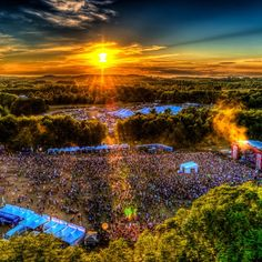 Forest Gallery | Electric Forest Festival