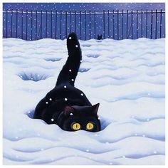 Snow plough .