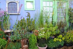 Container layering and wall art by Garden Up!, via Flickr