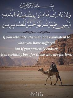 What Is Islam, Love In Islam, Allah Love, Quran In English, Mola Ali, Daily Mantra, Beautiful Quran Quotes, Seeking God, Quran Verses