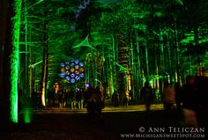 Sherwood Electric Forrest at night,Rothbury Music Festival, Michigan.
