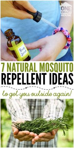 7 Natural Mosquito Repellent Ideas to Get You Outside Again! Enjoy the outdoors again with these natural mosquito repellent ideas! Make the most of the spring and summer weather, minus harsh chemicals and bug bites. Diy Mosquito Repellent, Natural Mosquito Repellant, Mosquito Repelling Plants, Insect Repellent, Mosquito Repellent Essential Oils, Midge Repellent, Mosquito Repellent Bracelet, Misquito Repellant, Bug Juice