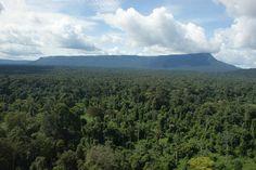 Suriname landscape