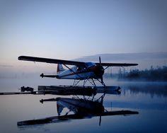 "rvsm: ""Misty Morning Beaver by Morgan Swant on Flickr. "" Sea Plane, Float Plane, Flying Ship, Flying Boat, Beaver Shot, Bush Pilot, How Ya Doin, Aircraft Images, Bush Plane"