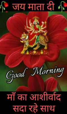 Gud Morning Images, Good Morning Flowers Pictures, Flower Pictures, Good Morning Quotes, Girl Pictures, Happy Birthday Cake Photo, Baby Krishna, Durga Maa, Scenery Wallpaper