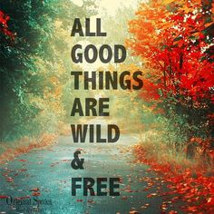 The best things in life are wild and free :)