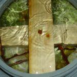 Varza murata la butoi după rețeta ungurească folosită în Ardeal. Nu te mai saturi de ea! Mai, Asparagus, Vegetables, Studs, Vegetable Recipes, Veggies
