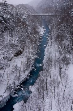 Blue stream in a snow forest