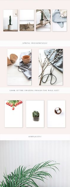 Spring Series styled stock photos products by Nellaino on @creativemarket Flat lay, stock photography