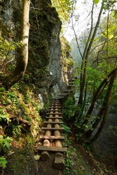 The wooden path in Slovenský Raj National Park, Slovakia. It's really beautifull. Slovensky Raj means Slovakians Paradise. The Places Youll Go, Places To See, Beautiful World, Beautiful Places, Wonderful Places, Wooden Path, Wooden Steps, Magic Places, Photos Voyages