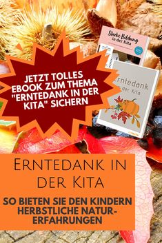 Thanksgiving in your daycare - Kita PAX - Nageldesign Natur