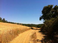 along san galgano trail!