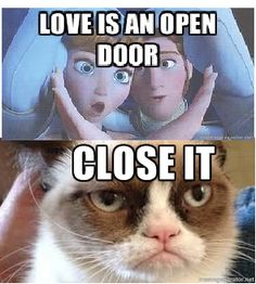 I relate to grumpy cat on matters of the heart on SO many levels.