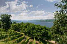 Keuka Lake, from the Bluff by Varuka Blue on 500px | Bluff | FLX | Keuka Lake | winery | vineyard