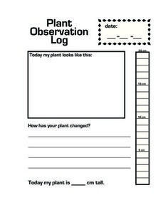 """A page for each day the students would be observing their plants to be put in a plant book. It's neat to watch how the observations change! This log contains a space to record the date, draw a picture, measure the height, and asks the question """"How has your plant changed?"""" This encourages students to compare their plant each day to the previous days and they can tangibly measure progress in several forms. This activity can easily be differentiated for different levels and learning styles…"""