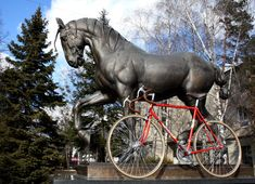 bicycle Favorit 1966 – noelgabriel – album na Rajčeti Road Bike, F1, Bicycle, Horses, Album, Animals, Vintage, Bike, Animales