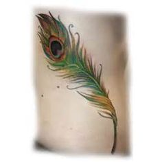 Little Bird Tattoo Peacock Feather  Retina Wallpapers picture 5191