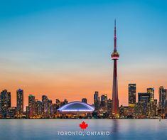 We can help you plan a future trip to Canada's biggest and most diverse city! #travelpics #traveltheworld #travelphoto #travellife #traveladdict #travelblog #travelbug #traveljunkie #traveltheglobe #ladiesgoneglobal #girlswhotravel #wearetravelgirls #girlsborntotravel Travel Pictures, Travel Photos, Toronto Images, Travel News, Canada Travel, Cn Tower, Traveling By Yourself, Travel Destinations, Skyline