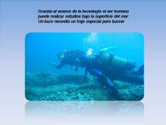 Gracias al avance de la tecnología el ser humano puede realizar estudios bajo la superficie del mar. Un buzo necesita un traje especial para bucear