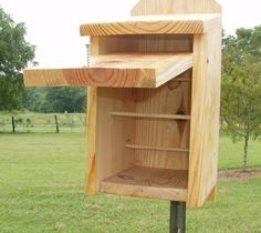 roosting+box+plans+for+birds   roosting boxes   roosting box with door open