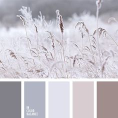 Winter ~ inverno #color #palette