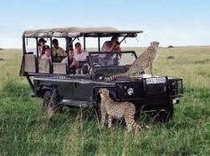 Safari in Kenya http://www.sphimmstrip.com/2014/03/incontro-con-mama-facocero-inconvenienti-del-safari-in-kenya.html?m=1