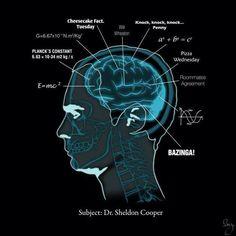 Subject: Dr. Sheldon Cooper!