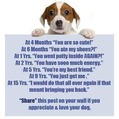 """I would do that all over again if that meant bringing you back""! Wish I could find the origin of this image, but whoever created it is definitely a dog lover."