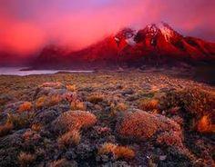 Torres del Paine National Park - Bing Images