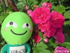 敬老の日|まりもっこりオフィシャルブログ「ミナミナまりもっこり」Powered by Ameba #marimokkori #item