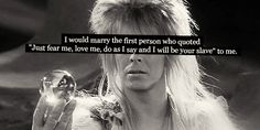 Hello, and welcome to Labyrinth Confessions! Here, you can anonymously submit your opinions on anything related to Labyrinth. All confessions can be submitted into the ask box. Jim Henson Labyrinth, Labyrinth 1986, Labyrinth Movie, David Bowie Labyrinth Quotes, Sarah Labyrinth, Labyrinth Tattoo, Doing Me Quotes, Labrynth, Goblin King