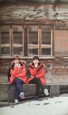 Check out Super Junior @ Iomoio Siwon, Heechul, Eunhyuk, Super Junior Songs, Kpop, Super Junior Leeteuk, Return Of Kings, Lee Hyukjae, Fandom