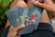Divination Cards, Tarot Card Decks, Bird Cards, Gsm Paper, Oracle Cards, Color Card, Deck Of Cards, The Book, Birds