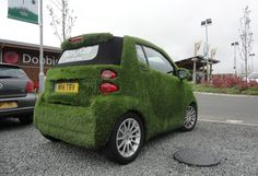 easibug+easigrass+dobbies+lisburn+1.jpg (1280×876)