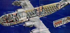 Boeing Stratocruiser Cutaway Drawing 1952
