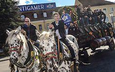 Tabellenführer zu Besuch in der Brauerei Puntigam: Spieler des SK Sturm Graz besuchen die bierige Nummer eins in der Steiermark Monster Trucks, Horses, Vehicles, Animals, Graz, Number One, Brewery, Photo Illustration, Animais