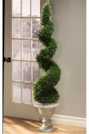 Love topiaries - want 2 of these by my front door!