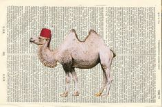Happy Camel Fez Illustration Beautifully by PigAndGinStudios, $10.00