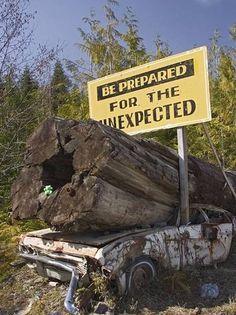 Необычные дорожные знаки и указатели